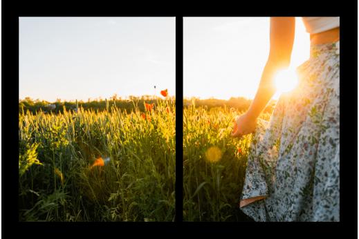 Модульная картина Девушка в поле